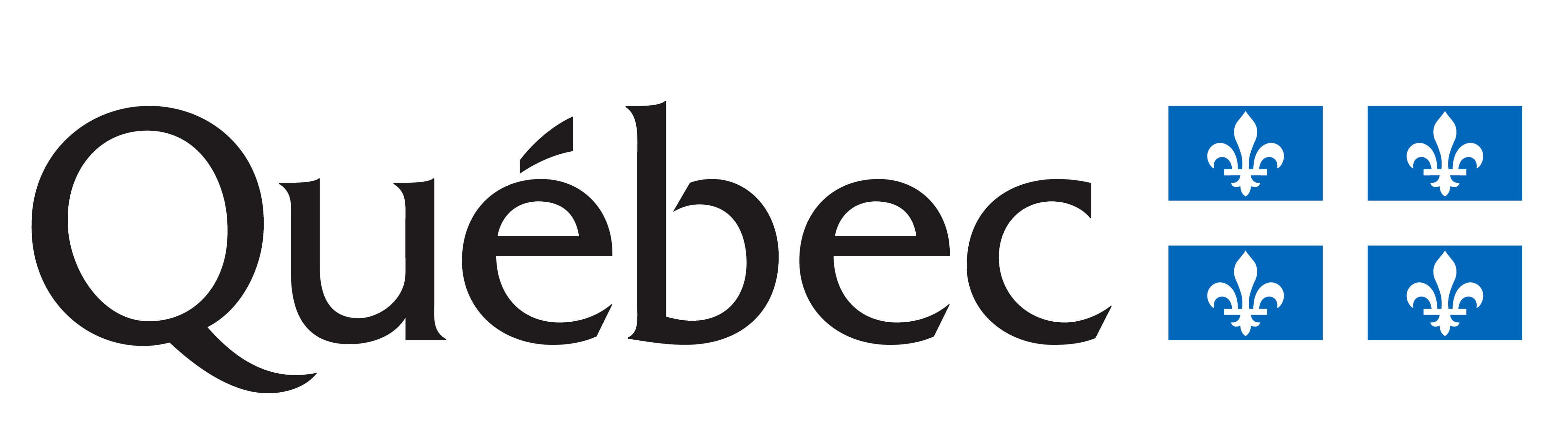 Le Ministère de l'éducation et de l'enseignement supérieur (MEES)